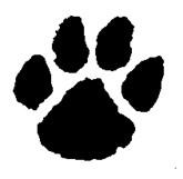 Bobcat pawprint