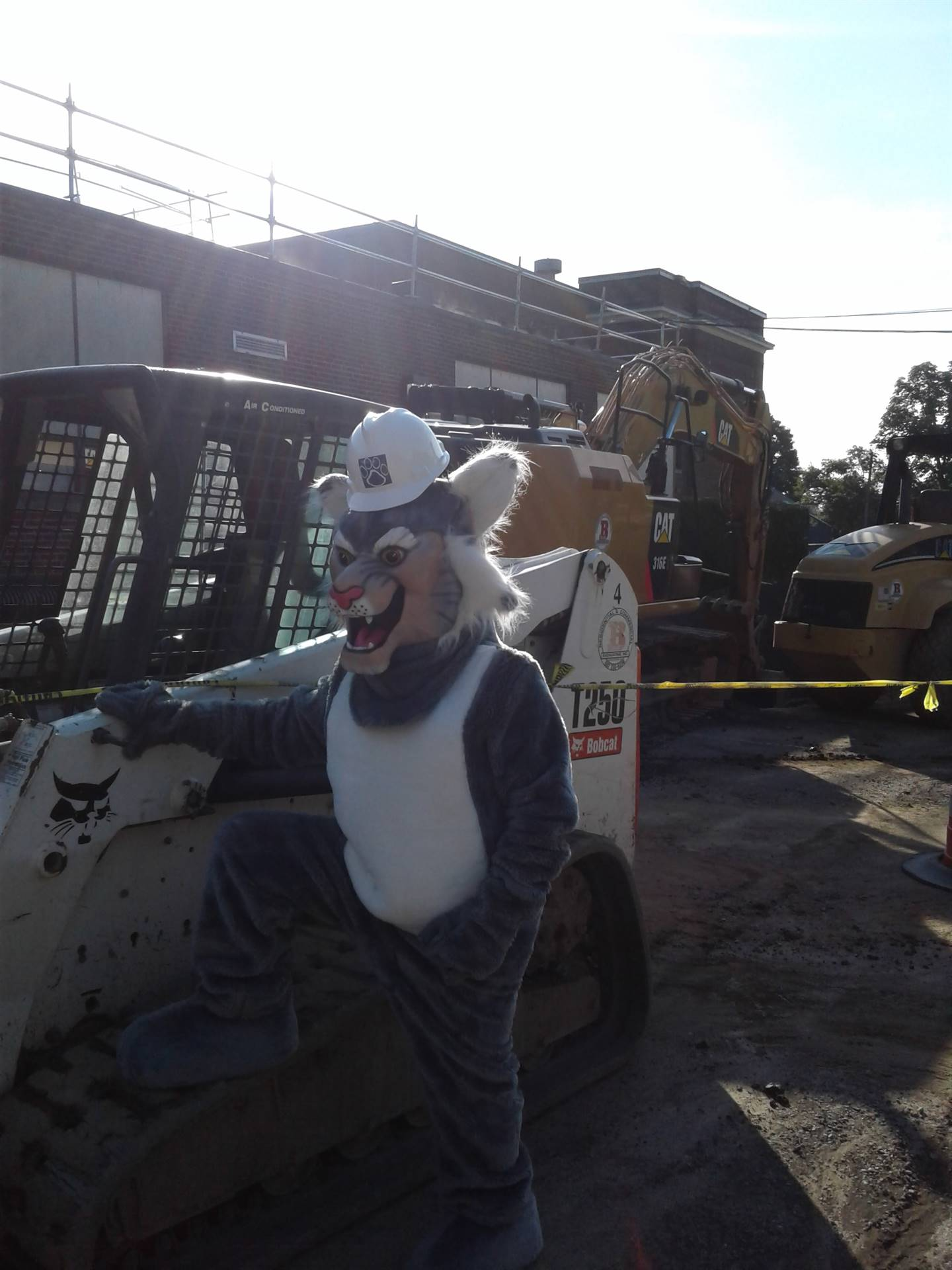 Felix by the Bobcat - ready to work!