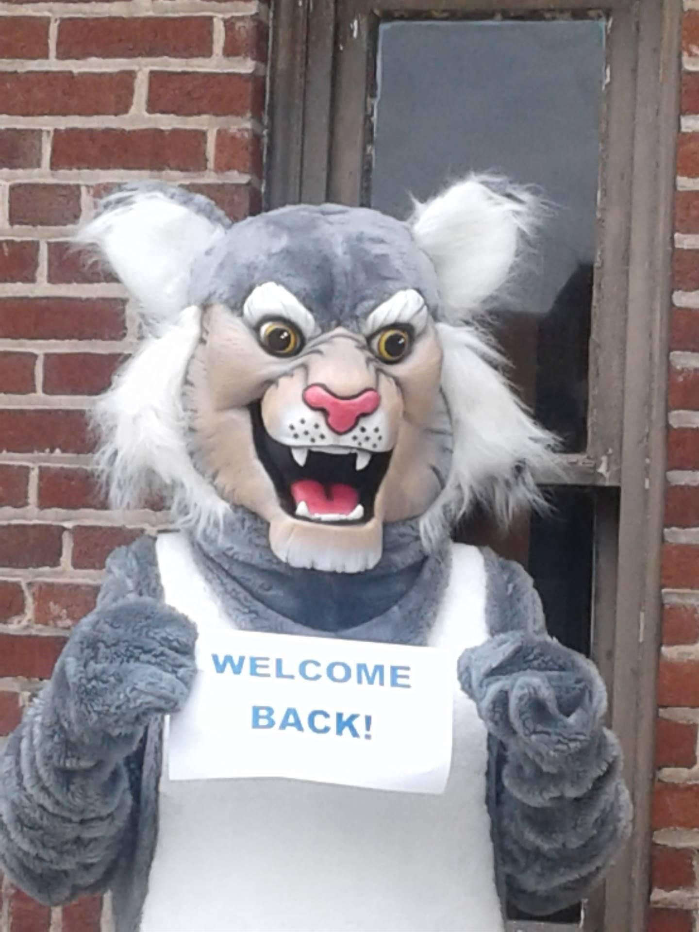Felix - Welcome Back!