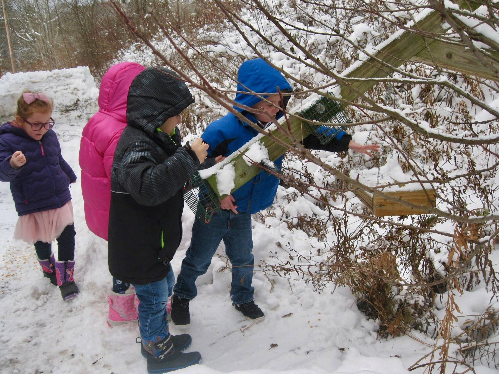 4 students feed the birds.