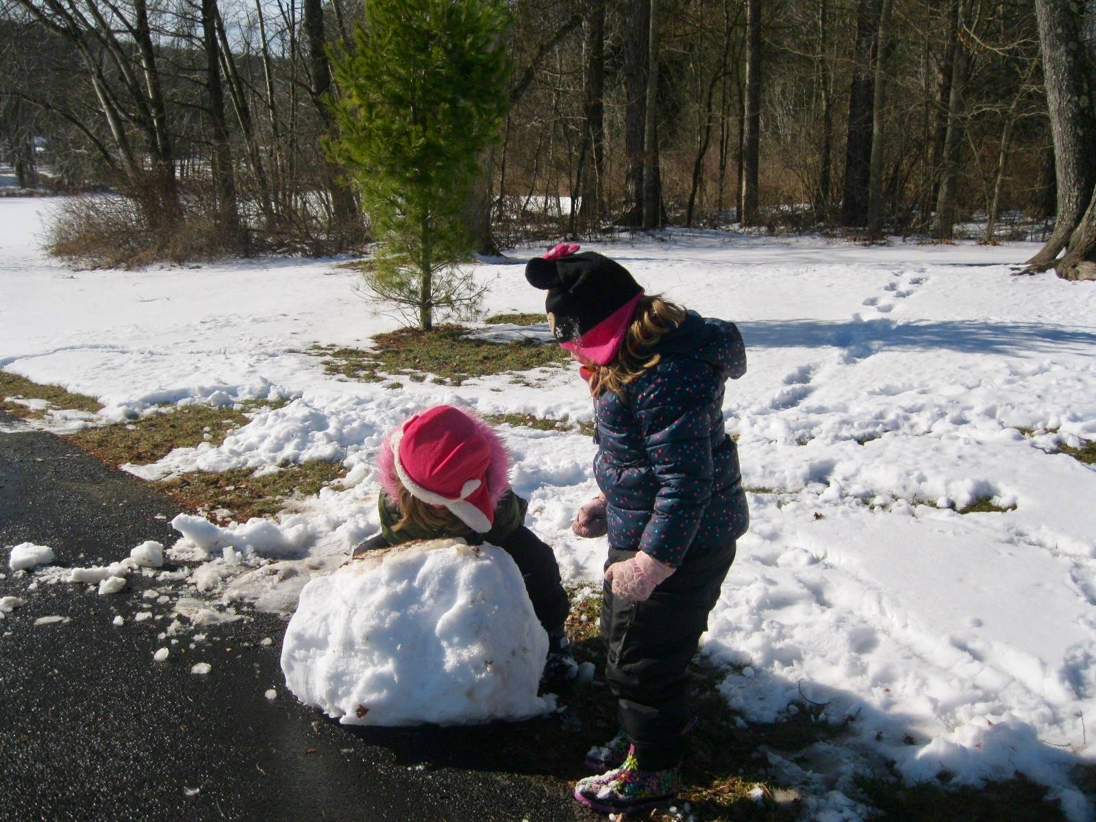 2 students pushing a giant snowball.